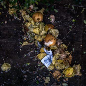 Compostagem simples: o lixo da cozinha que vira adubo