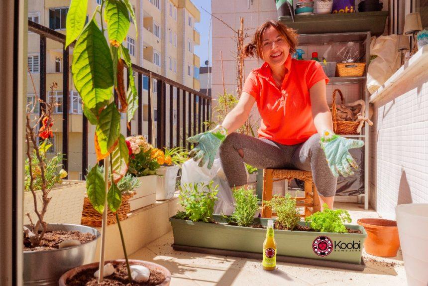 Horta orgânica em vasos: cultive esse hobby saudável!