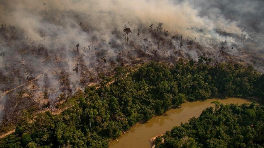 grandes incêndios destroem florestas-6