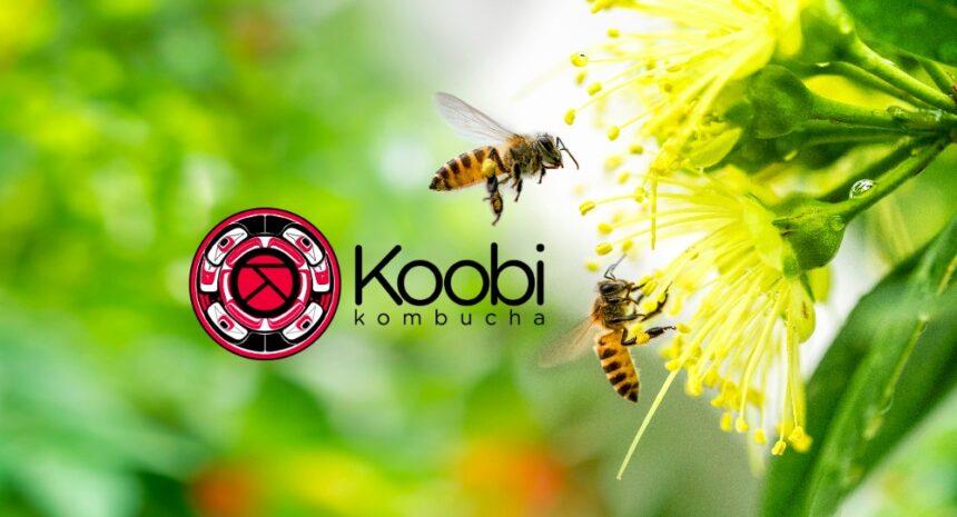 É preciso lutar contra o desaparecimento das abelhas