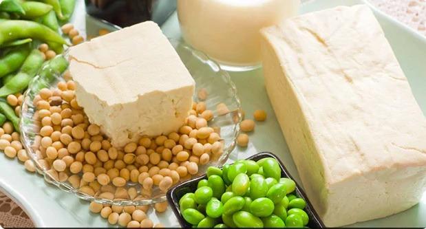 tofu benefícios à saúde - 2