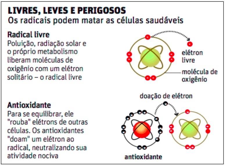 ANTIOXIDANTES - 2